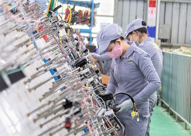 越南辅助工业的亮点 hinh anh 2