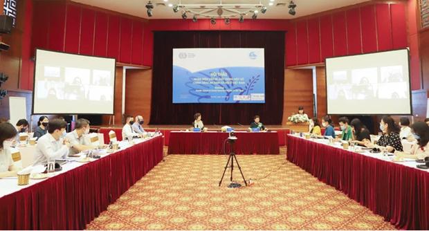 促进越南社会保险和社会保障体系中的性别平等 hinh anh 1
