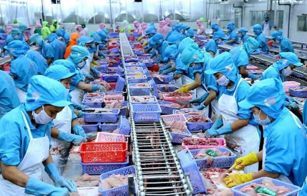 多家越南企业签署到2021年底的出口订单 hinh anh 1