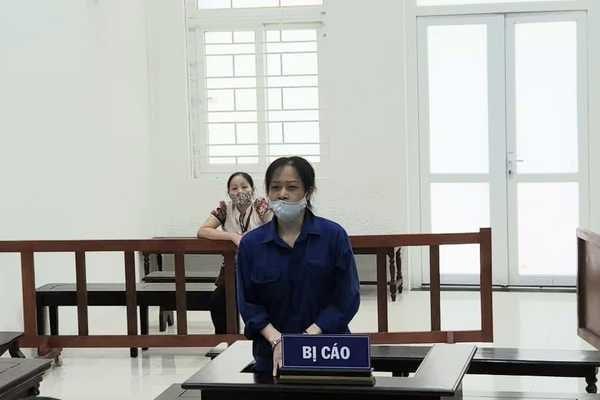 利用律师名义之便损害个人和组织名誉的阮氏水获刑20个月 hinh anh 1