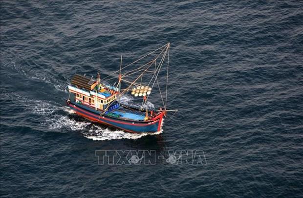 严查严处串通和勾结引导越南渔民进入外国海域从事非法捕捞的行为 hinh anh 1