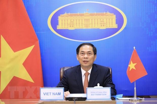 裴青山以视频方式出席第11届湄公河-恒河合作外交部长会议 hinh anh 1