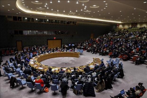 越南与联合国安理会:越南对塞浦路斯的政治紧张局势表示担忧 hinh anh 1