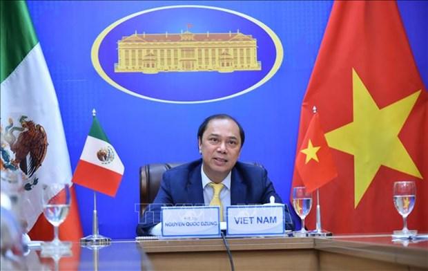 越南与墨西哥第六次政治磋商以视频形式举行 hinh anh 2