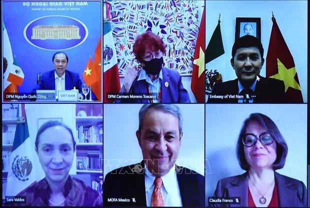 越南与墨西哥第六次政治磋商以视频形式举行 hinh anh 1