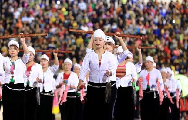 越南文化体育与旅游部在疫情背景下全面推进数字化转型 hinh anh 1