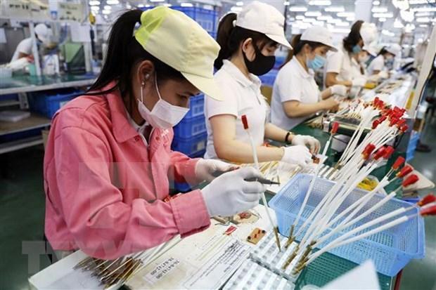印度媒体:越南正崛起成为地区的经济强国 hinh anh 1