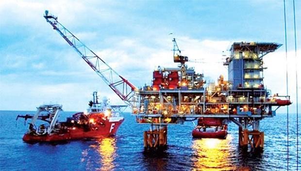 越南油气集团成为世界上最具净资产收益率的油气公司之一 hinh anh 1