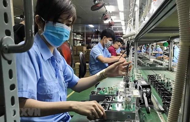 2021年7月越南新成立企业数量环比下降22.8% hinh anh 1