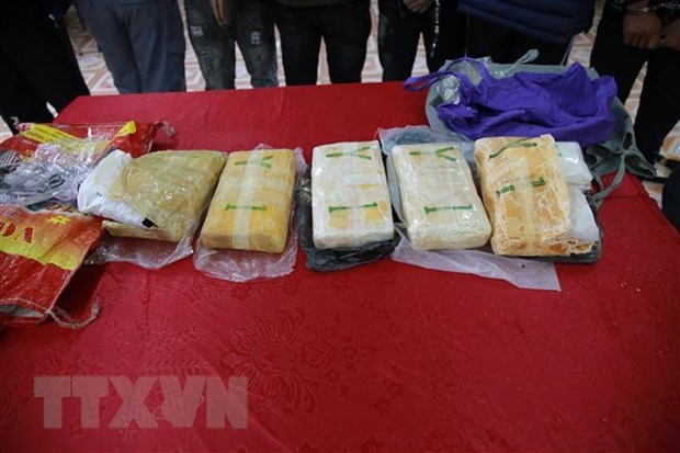 越南与老挝加强禁毒合作 hinh anh 1
