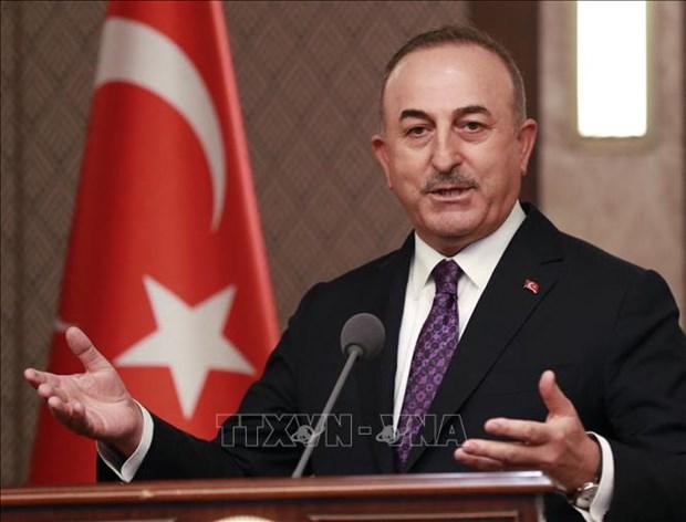 土耳其外长:东盟与土耳其关系发展前景乐观 hinh anh 1