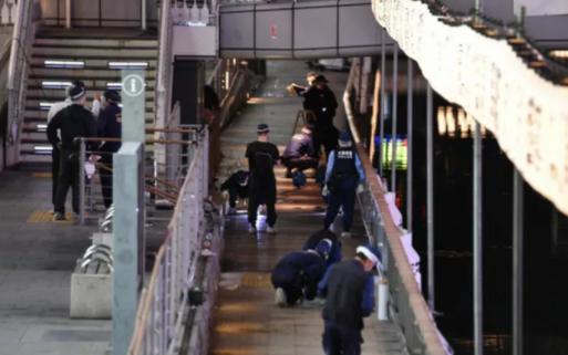 在日越南男子溺死案:日本警方将死者遗体移交越方 hinh anh 1
