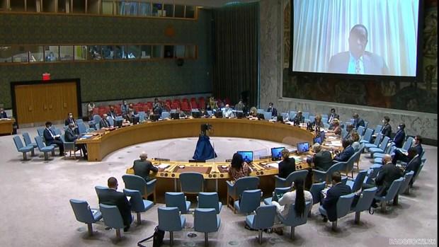 越南与联合国安理会:越南呼吁索马里政府与非洲联盟驻索马里特派团保持密切配合 hinh anh 1