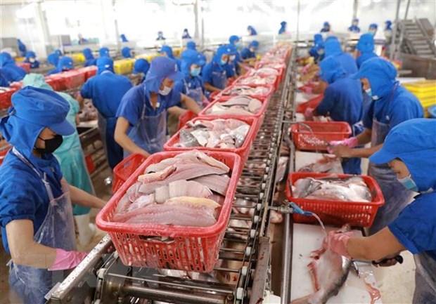 力争到2030年将越南打造成为全球水产加工中心 hinh anh 1