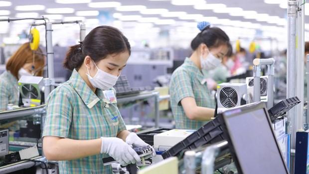 2021年前七个月越南与阿联酋进出口额同比增长37.8% hinh anh 1