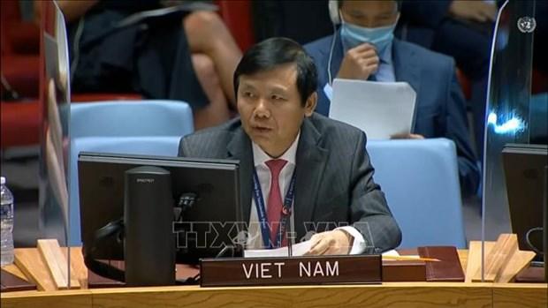 越南与联合国安理会:越南呼吁确保伊拉克选举安全 hinh anh 1