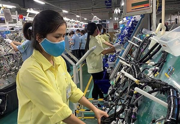 永福省支持各家手工艺作坊提升生产率 hinh anh 1