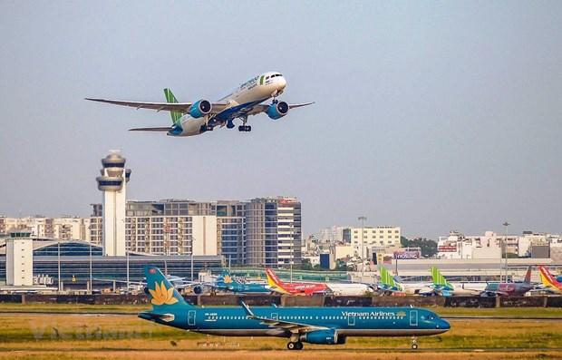 越南航空局:各家航空公司暂停出售国内航线机票 hinh anh 1