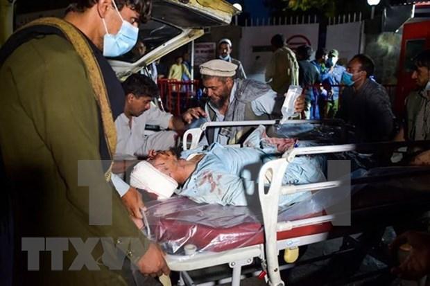 越南外交部发言人:阿富汗恐怖袭击中暂无越南公民遭受影响的报告 hinh anh 1