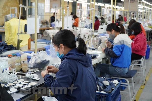 外国专家:贸易自由化对越南的成功扮演着重要角色 hinh anh 1