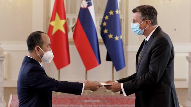 越南—斯洛文尼亚:推进合作 携手解决共同关心的问题 hinh anh 1