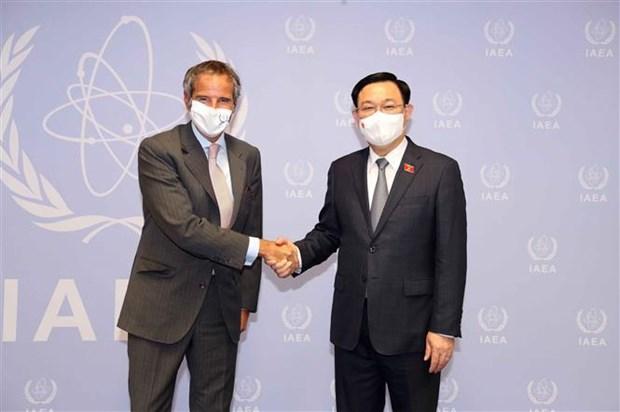 国会主席王廷惠会见国际原子能机构总干事格罗西 hinh anh 1