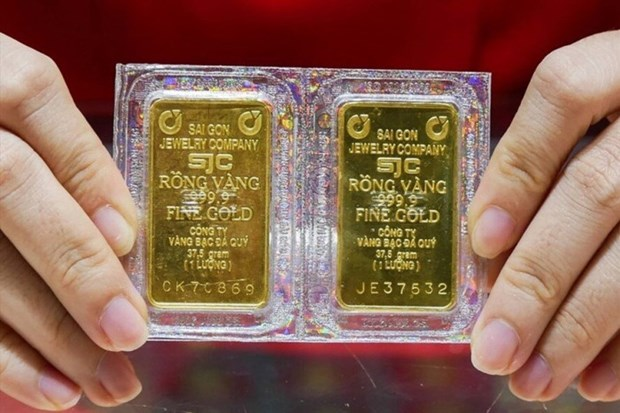 9月8日上午越南国内黄金价格下降25万越盾 hinh anh 1