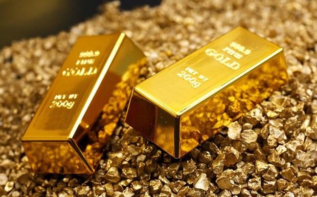9月14日上午越南国内黄金价格每两下降5万越盾 hinh anh 1