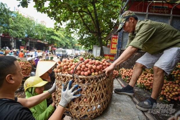 电子商务促进农产品销售 hinh anh 1
