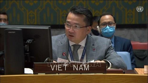 越南与联合国安理会:越南呼吁为苏丹获得国际金融资源提供便利 hinh anh 1