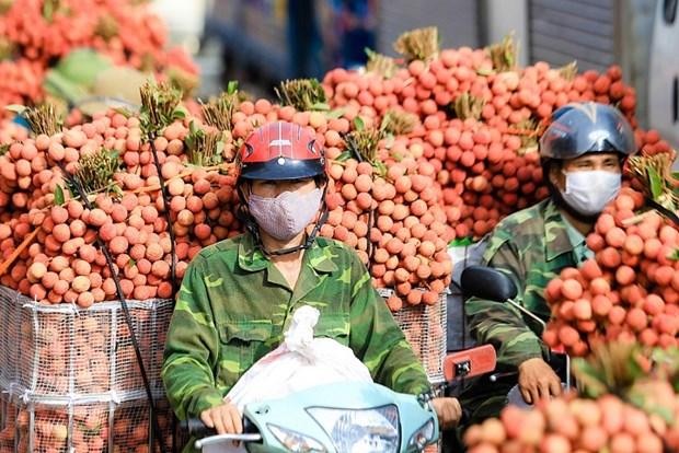 越中携手两国推动贸易便利化 hinh anh 1