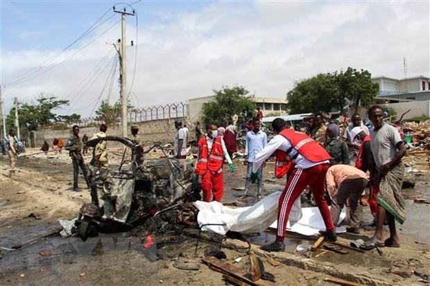 越南与联合国安理会:越南呼吁索马里各方致力于解决分歧,坚持国家利益至上 hinh anh 1