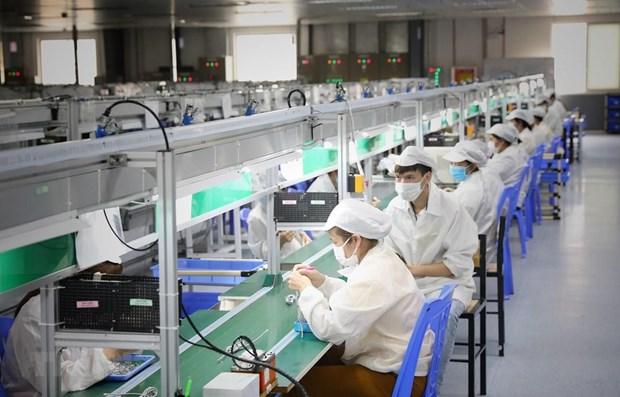 越南企业对招聘需求增长前景保持乐观态度 hinh anh 1
