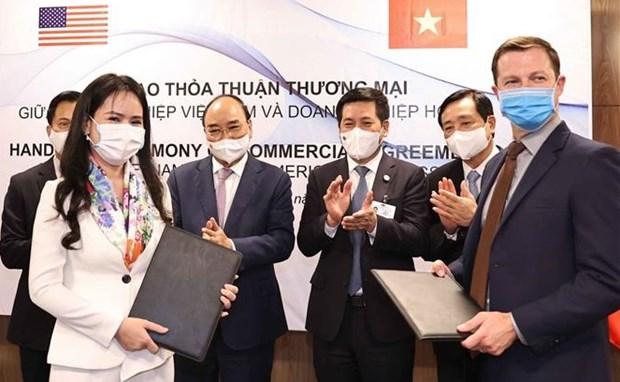 越南T&T 集团与美国伙伴签署可再生能源领域合作谅解备忘录 hinh anh 1