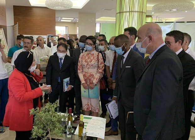 越南代表团在国际研讨会上分享创业经验 hinh anh 1