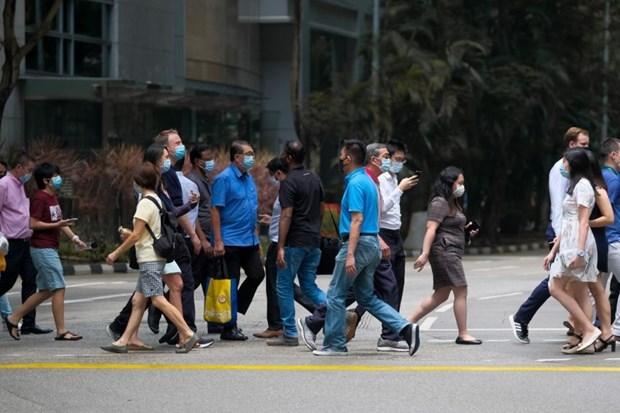 新加坡总人口连续两年减少 hinh anh 1