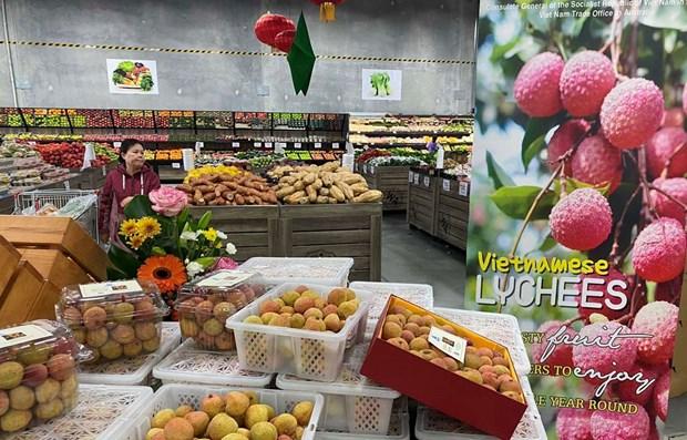 越南农产品应抓好进军英国市场的机会 hinh anh 1