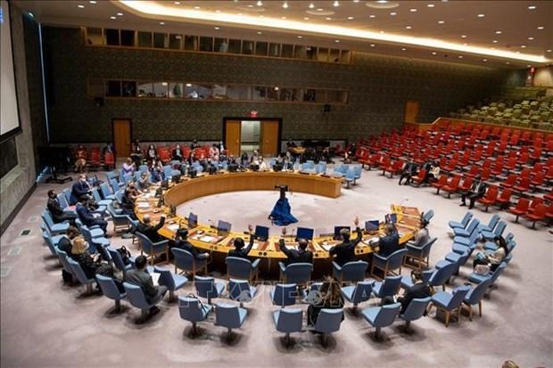 越南与联合国安理会:越南始终尊重和全面实施《禁止化学武器公约》 hinh anh 1