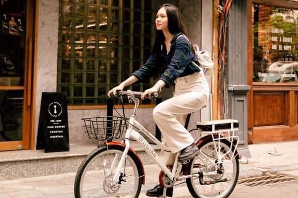 源自越南的绿色科技:连接柏林和越南 共同寻找机会 hinh anh 2