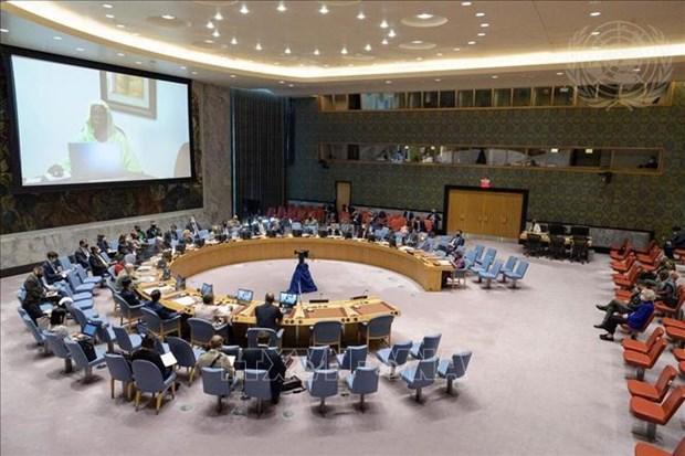 越南与联合国安理会:越南表示所有国家都有责任解决小型枪支和轻武器的非法贸易问题 hinh anh 1