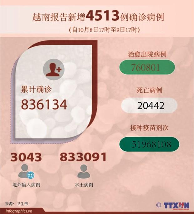 10月9日越南新增4513例新冠病例 105例死亡病例 hinh anh 2