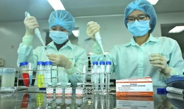 越南应努力增强新冠疫苗和各种医用生物制品自主供应能力 hinh anh 1
