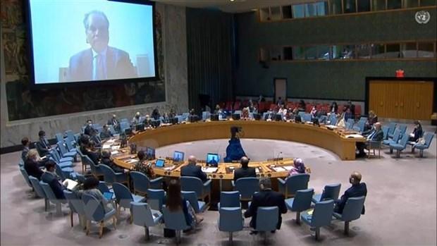 越南与联合国安理会:越南高度评价联合国特派团在维护存在争议的阿卜耶伊地区安全中的重要性 hinh anh 1