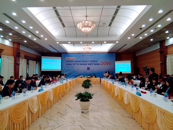 越南经济研究院举办经济论坛 为越南私营经济注入发展动力 hinh anh 1