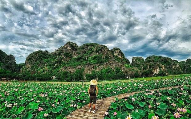 组图:宁平省在秋季盛开的荷花池令人惊叹 hinh anh 12