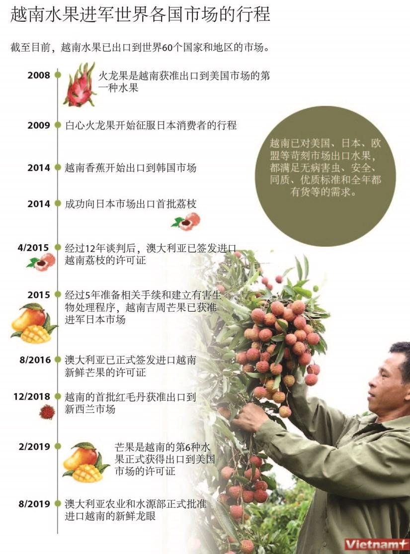 图表新闻:越南水果进军世界各国市场的行程 hinh anh 1