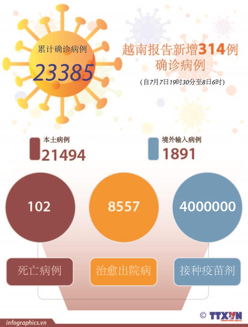 图表新闻:越南报告新增314例确诊病例 hinh anh 1