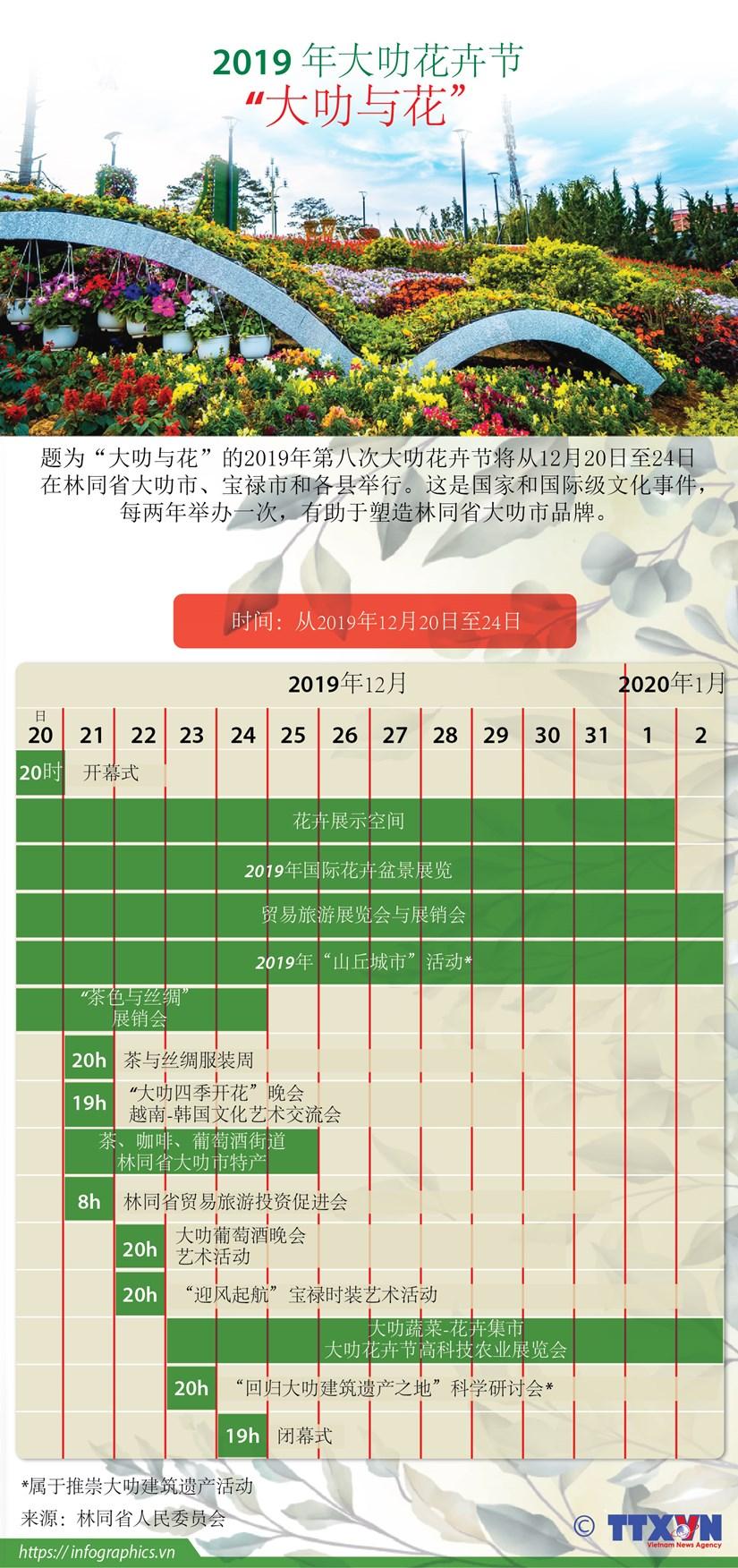 图表新闻:大叻市为花卉节缤纷多彩 hinh anh 1