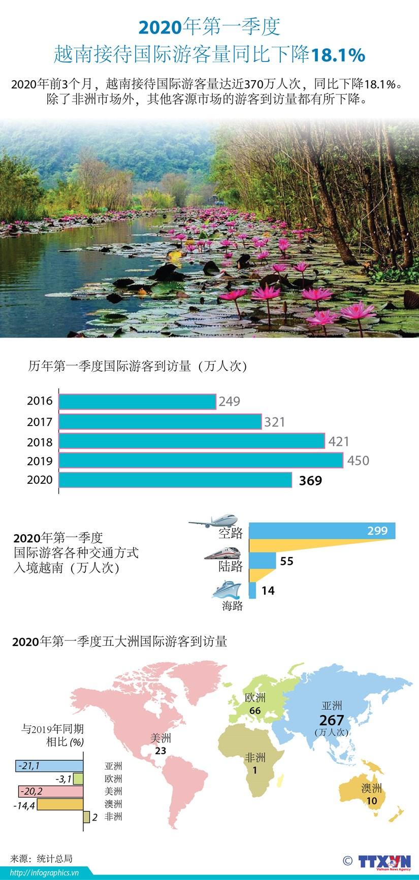 图表新闻:2020年第一季度越南接待外国游客人数同比下降18.1% hinh anh 1