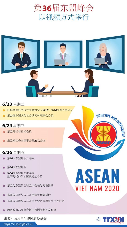 图表新闻:第36届东盟峰会以视频方式举行 hinh anh 1